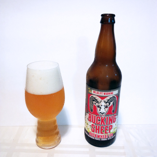 Dead Frog Bucking Sheep Buckwheat IPA