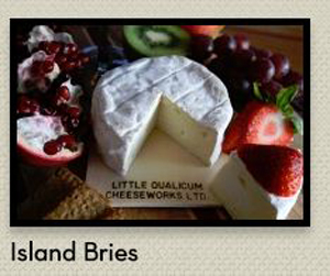 Their feature brie on their website